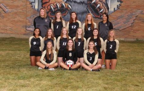Volleyball Makes it to Sectional Semifinal