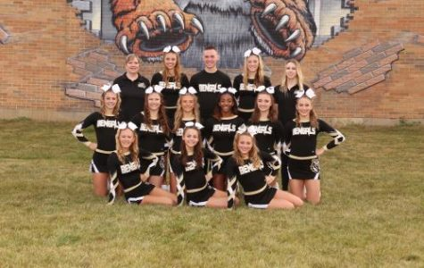Cheerleaders Take 2nd at State