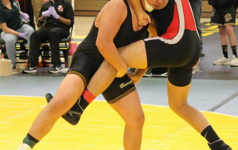 Three Bengal Wrestlers Place at State