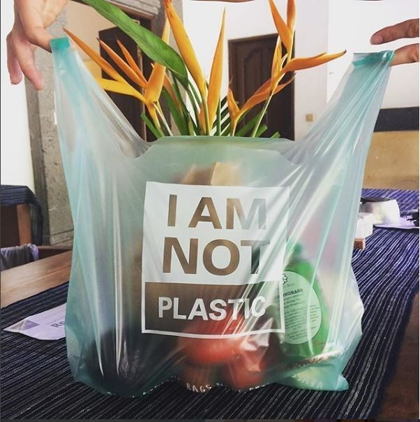 The Incredible, Biodegradable Bag
