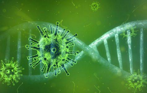 The Coronavirus Crisis