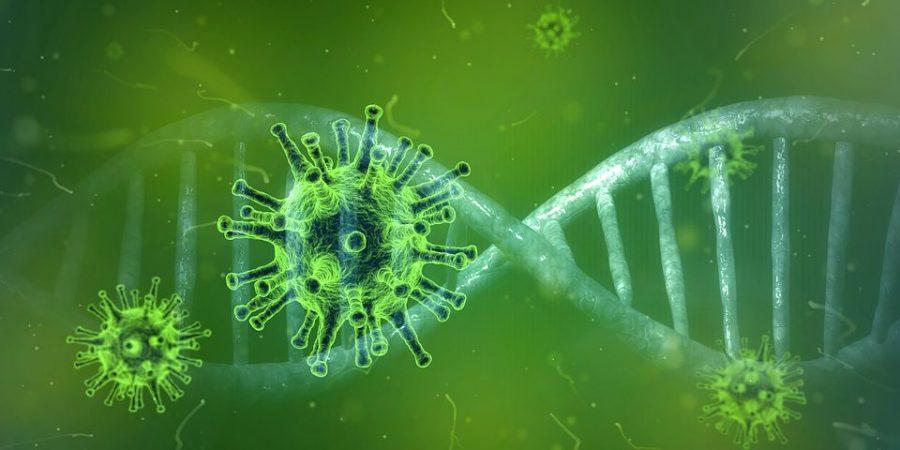 The+Coronavirus+Crisis