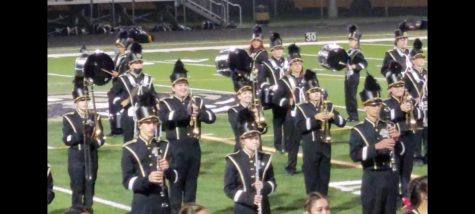 Marching Bengals Return to Form